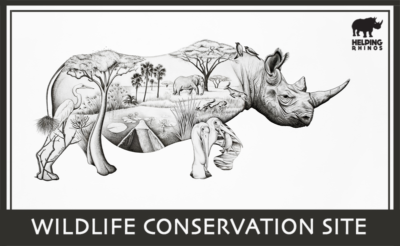 conservation of african wildlife as a key to future Wildlife conservation sites from helping rhinos are safeguarding wild  landscapes  in africa is increasing human wildlife conflict and threatening  wildlife habitat  other key wildlife species are protected and well managed wild  landscapes  will offer a future for rhino, elephant, lion and other endangered  wildlife species.