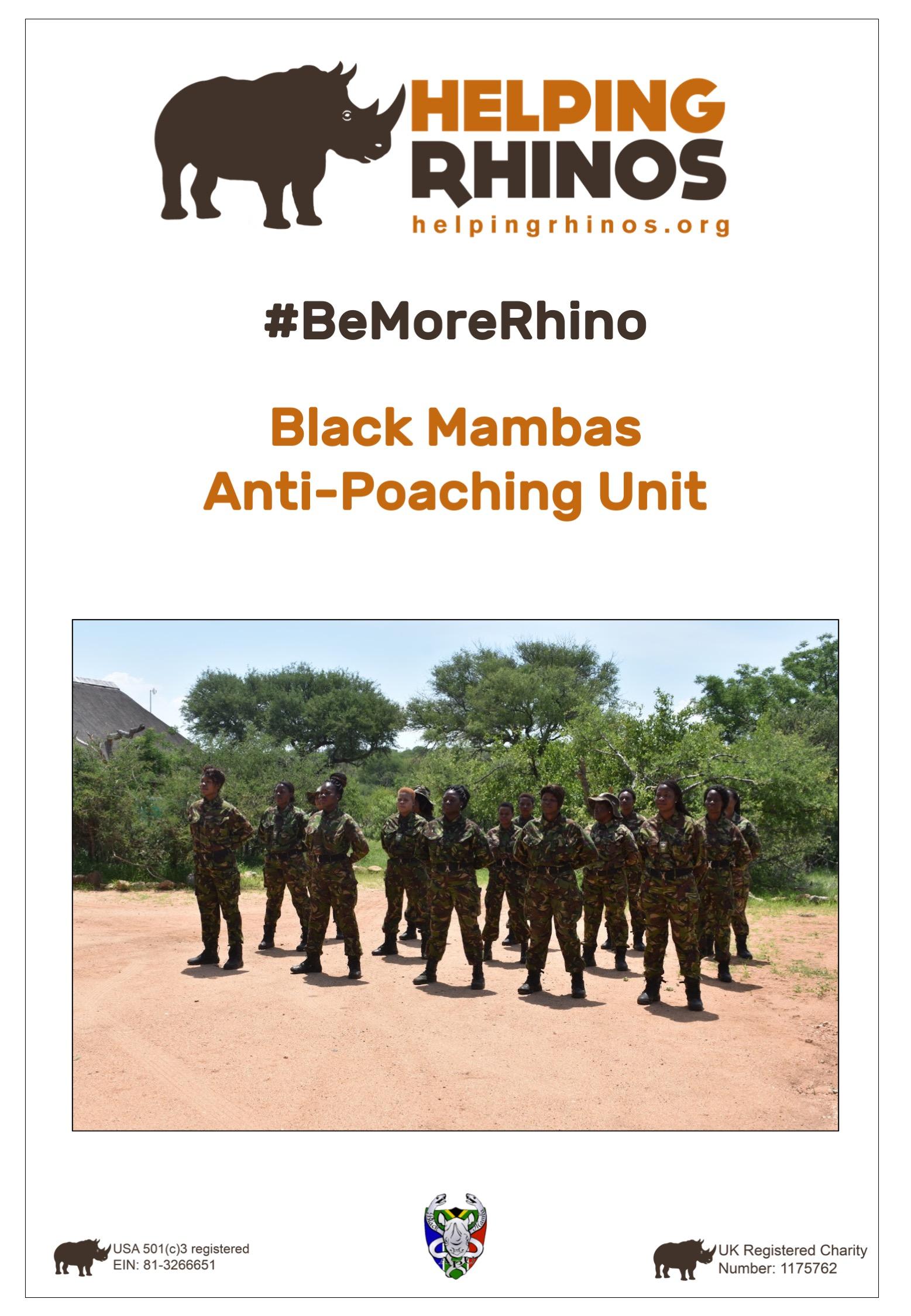 Black-Mamba-Factsheet