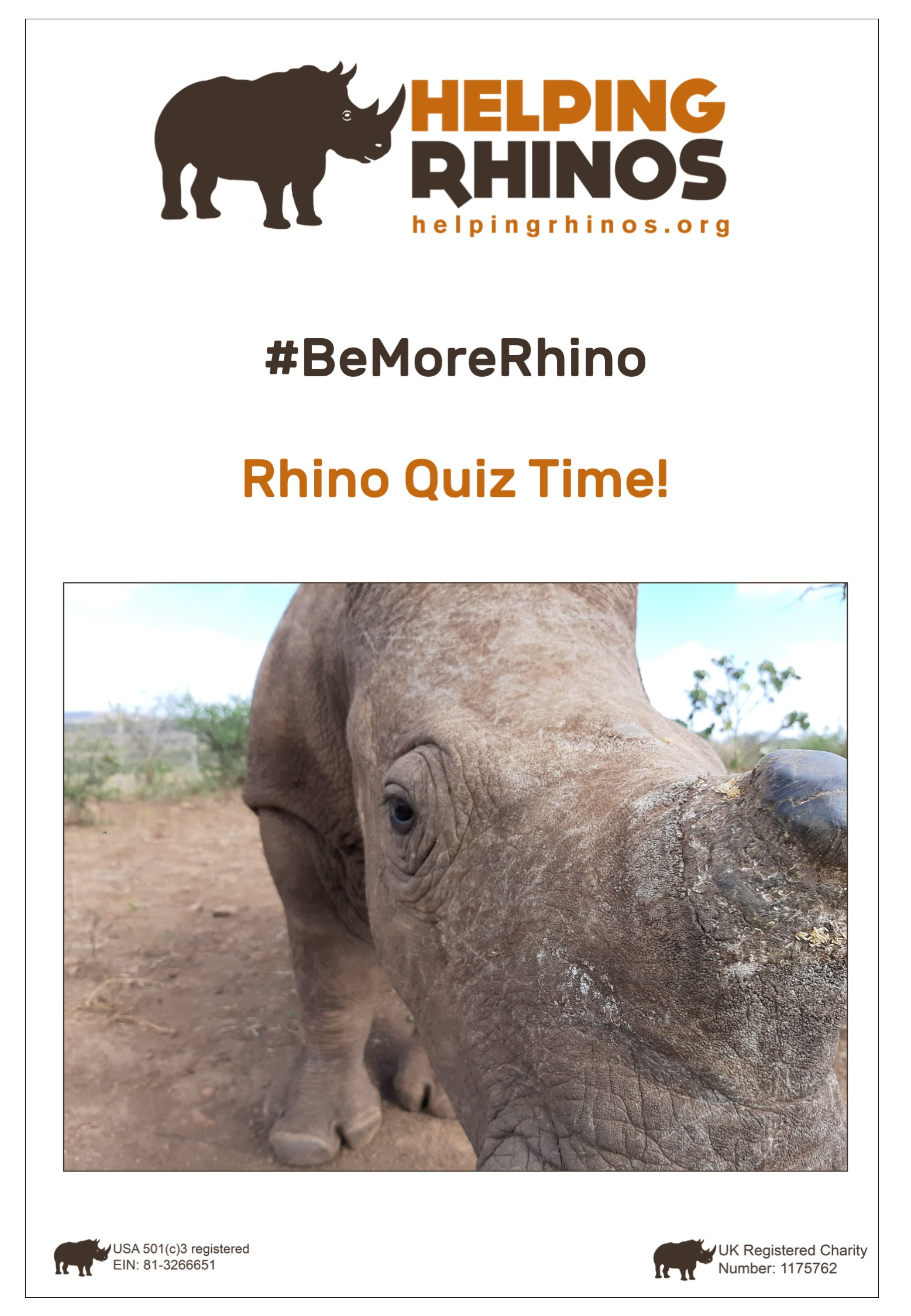 Rhino-Quiz-Time