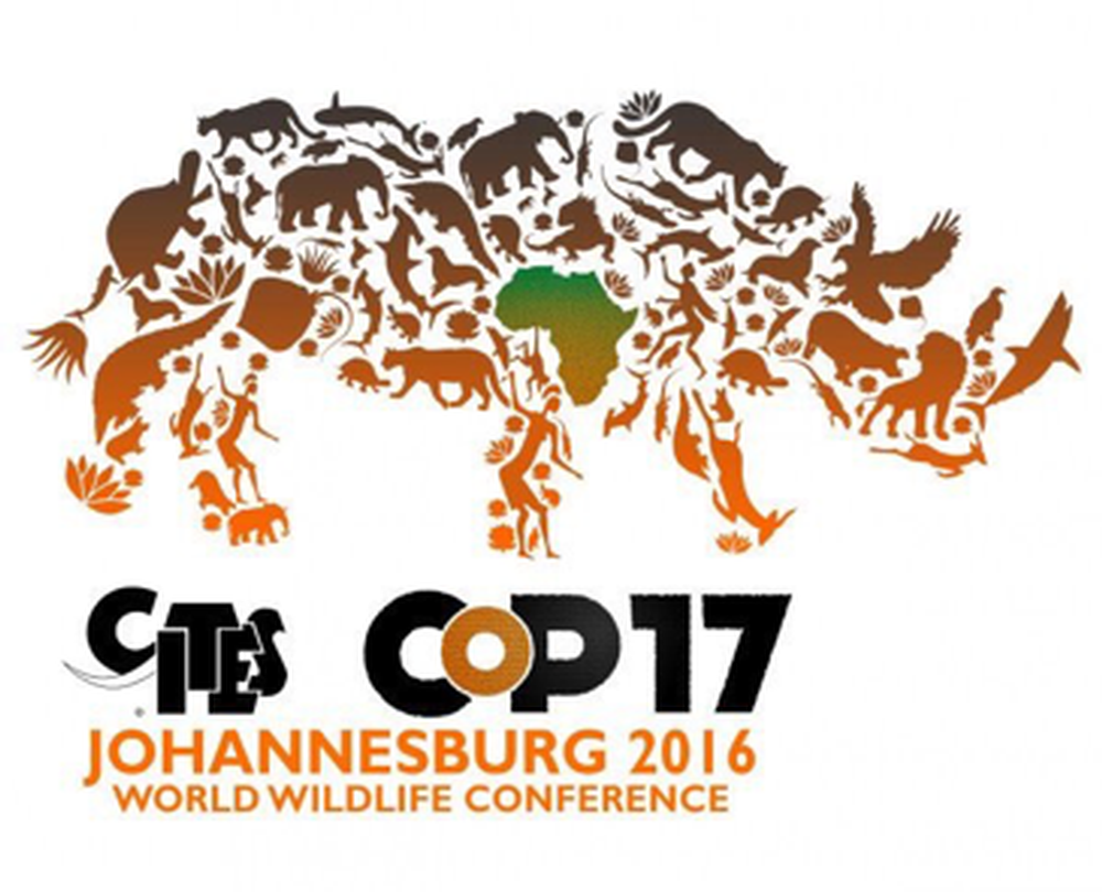 CITES Vote to Prevent a Legal Trade in Rhino Horn