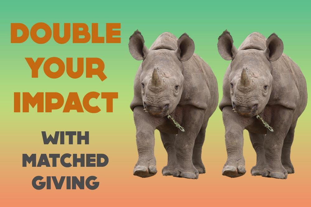 Double Your Impact with Matched Giving