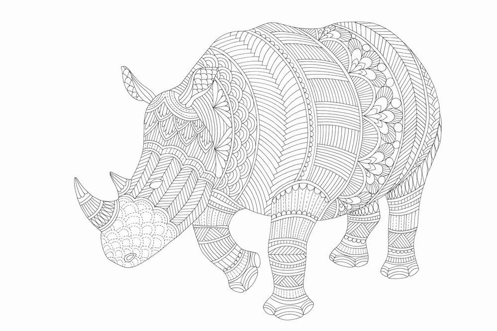 Millie Marotta World Rhino Day Competition