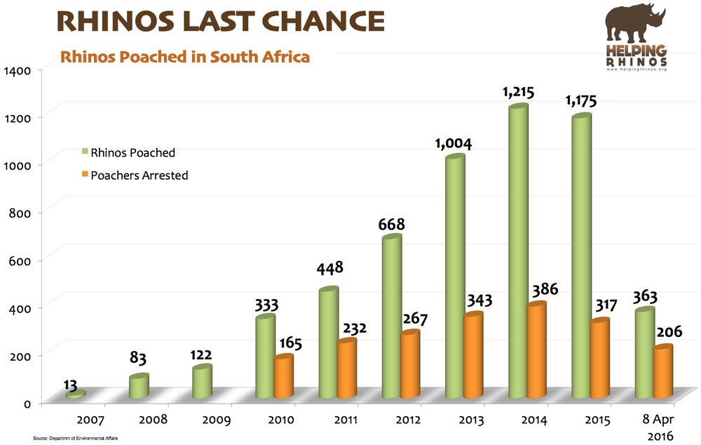 Official Rhino Poaching Stats for South Africa