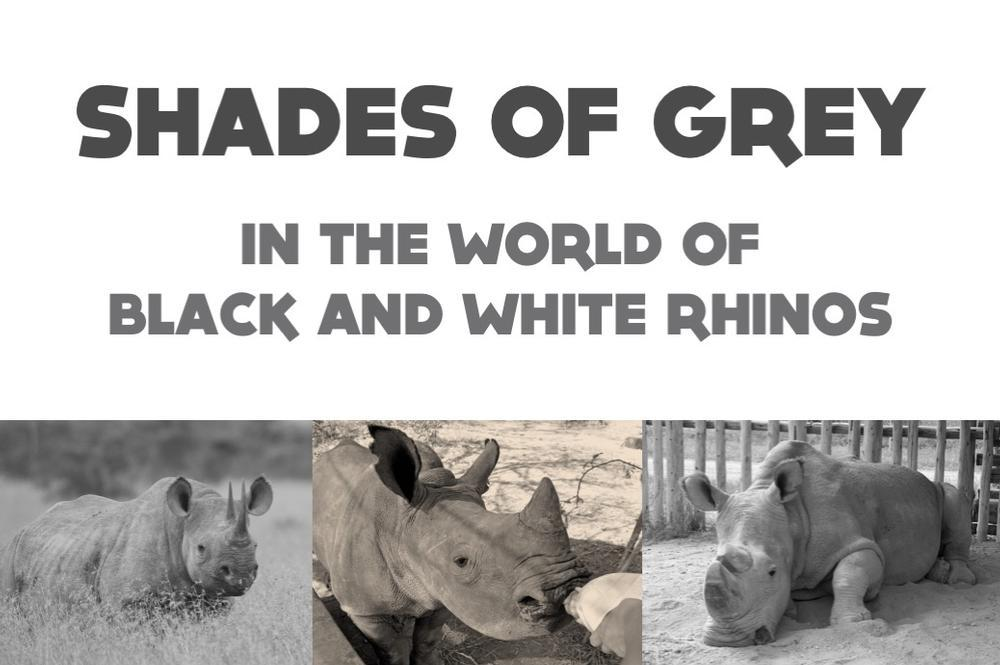 Shades of Grey - The World of Black and White Rhinos