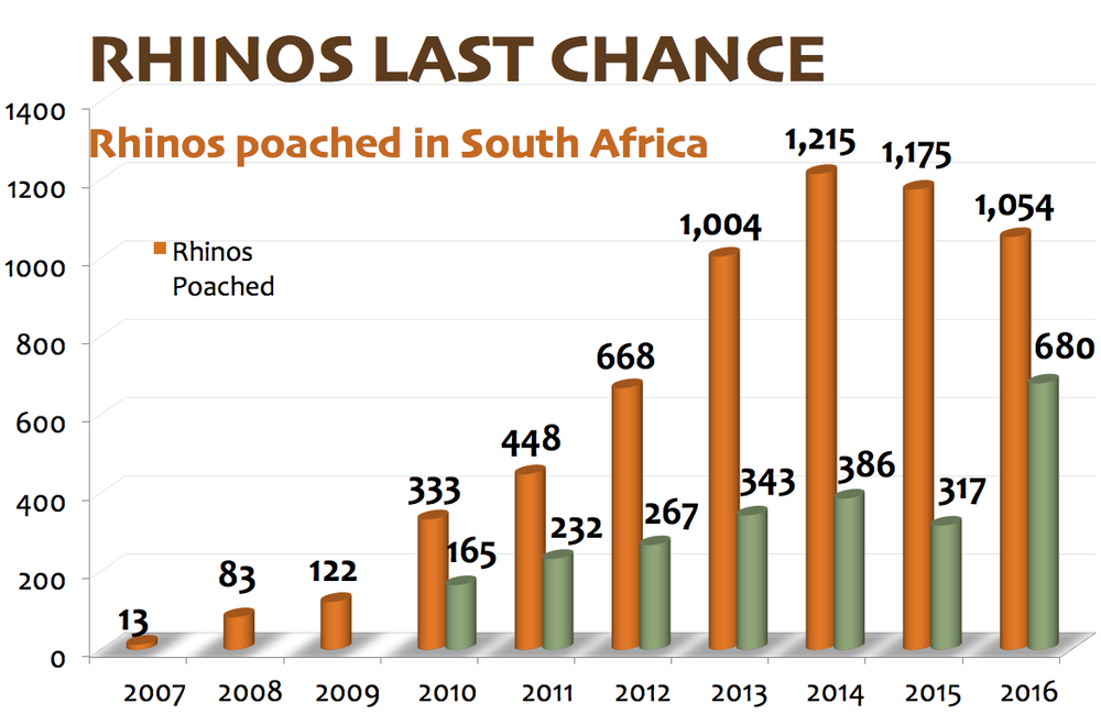 2016 Rhino Poaching Down but still Cause for Concern