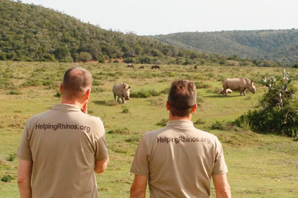 Rhinos Need us Now More Than Ever