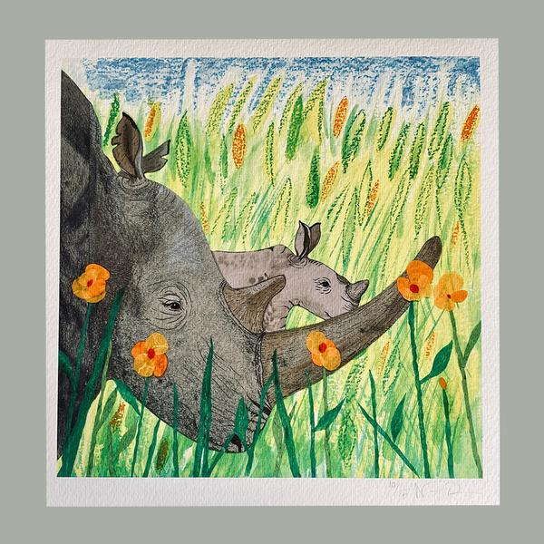Rhino Calf and Poppies from the book 'Last'