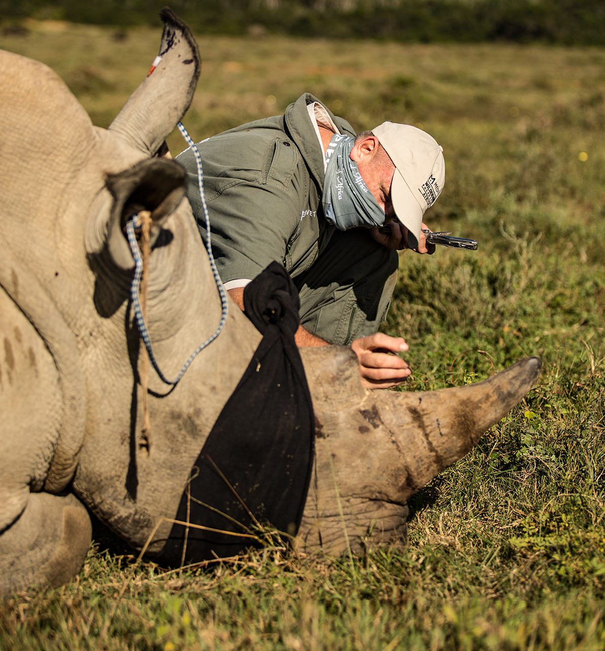 Rapid Response for Rhinos